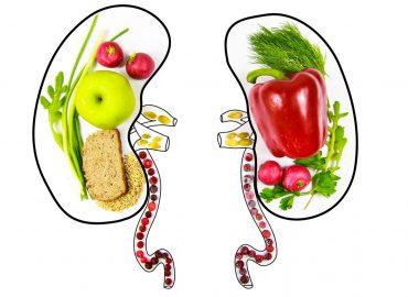Salute dei reni: che dieta seguire per prevenire disturbi