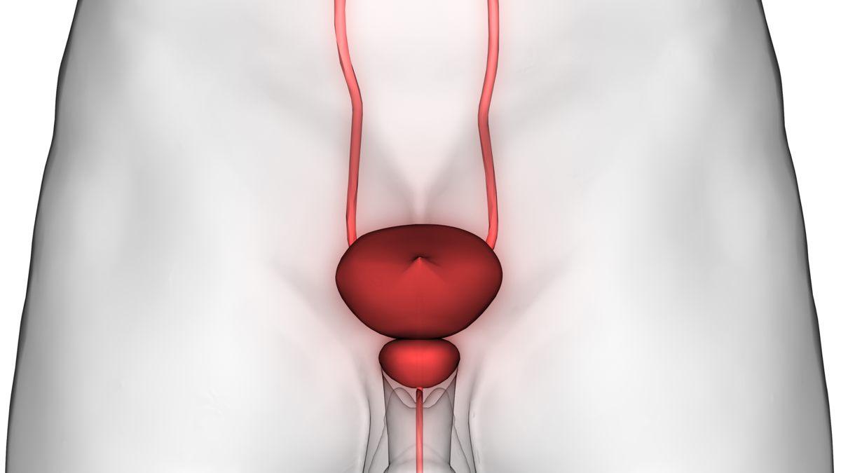 Tumore alla prostata: prevenzione e fattori di rischio
