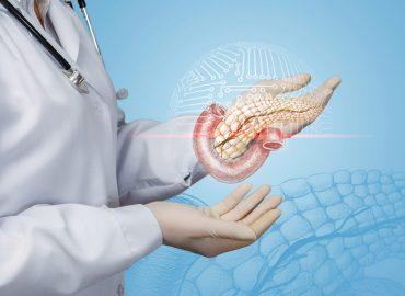 Pancreas esocrino ed endocrino: le funzioni