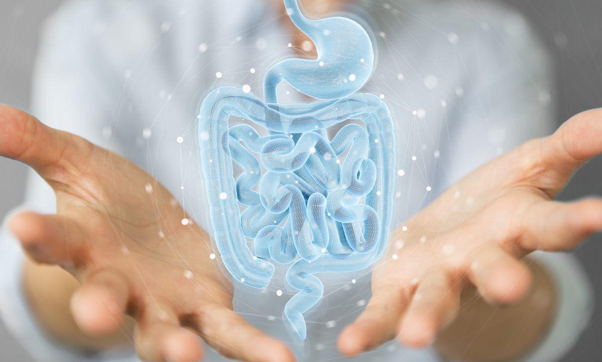Malattia di Crohn: come riconoscerla e cosa mangiare